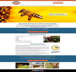 Bee Hive Removal Website